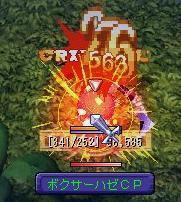 20060308boxerhazeCP.jpg