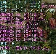 20070111_002.jpg