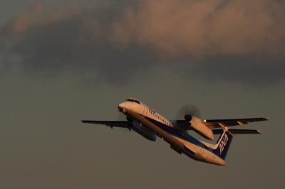 ANA DHC8-Q400 NH1623@RWY14Rエンド(by EF100-400)