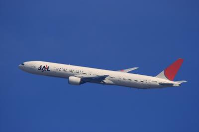 JAL B777-346 JL2081@瑞ヶ池公園(by EF100-400)