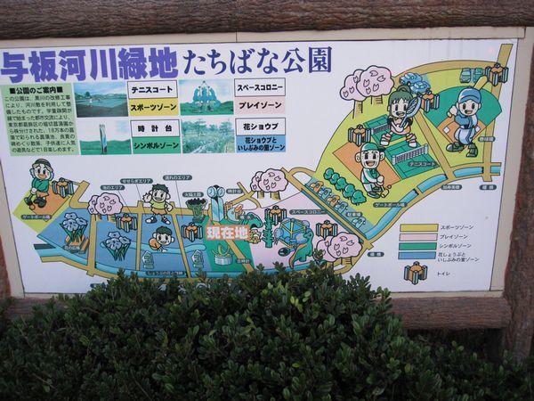 たちばな公園2