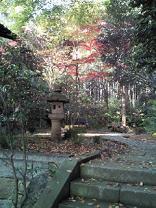 はけの森美術館4