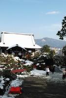 京都の初詣