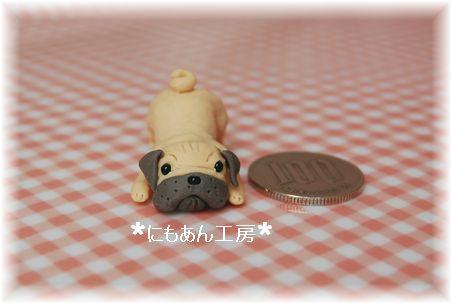 03-siripuri