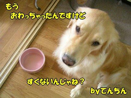 SANY0003_20090918100458.jpg