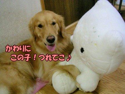SANY0008_20090919005010.jpg