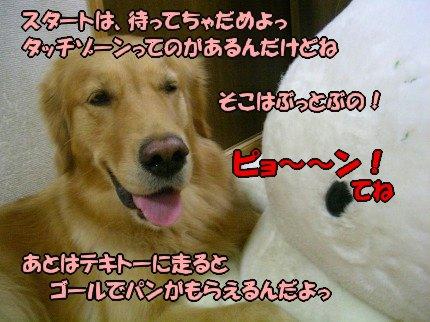 SANY0011_20090919005010.jpg