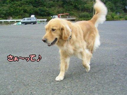 SANY0016_20091020091532.jpg