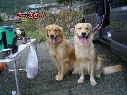 SANY0037_20091020091647.jpg