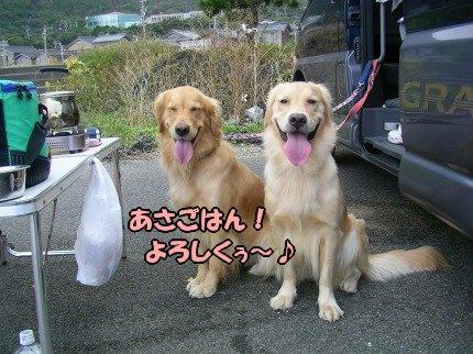 SANY0038_20091020091647.jpg