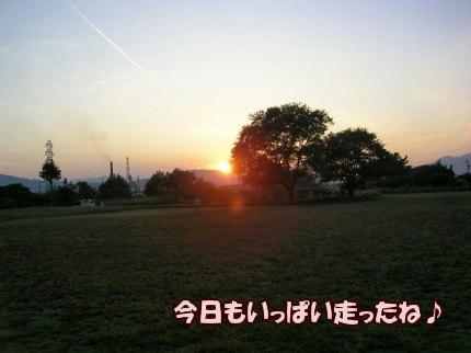 SANY0063_20091019061919.jpg