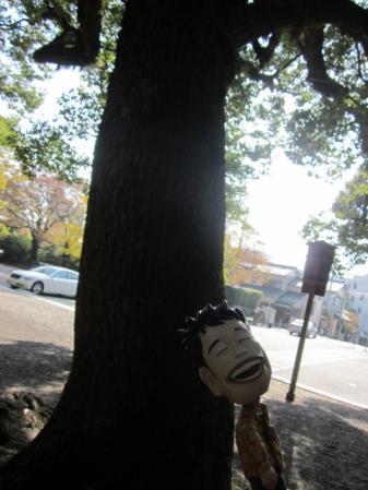 木にもたれかかるマッキーちゃん