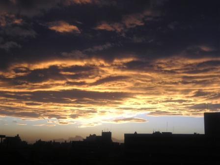 雨上がりの夕陽がとてもきれいです