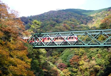 紅葉の登山鉄道
