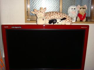 液晶テレビ キリン