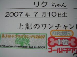 DSC00412.jpg