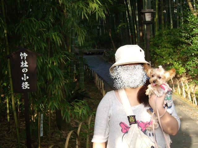 竹林ノンとママと写真コピー
