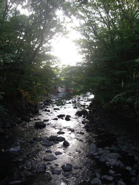 川のせせらぎが心地いいお散歩です