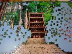 jigsaw_MUROUJI_1500_00H