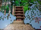 jigsaw_MUROUJI_1500_00I