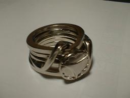ring2001s.JPG