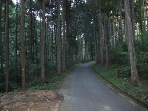 桜井~吉野~菟田野~桜井