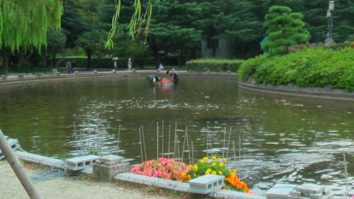 水上花壇最終