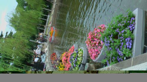 水上花壇進水