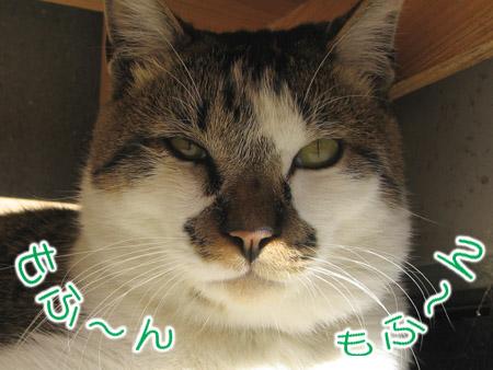 20071111_02.jpg