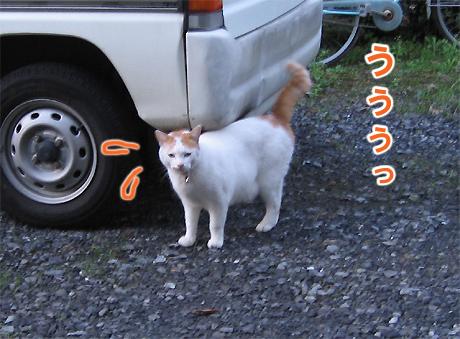 20071115_03.jpg