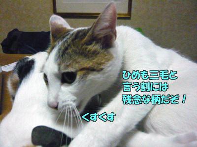 091005-04.jpg