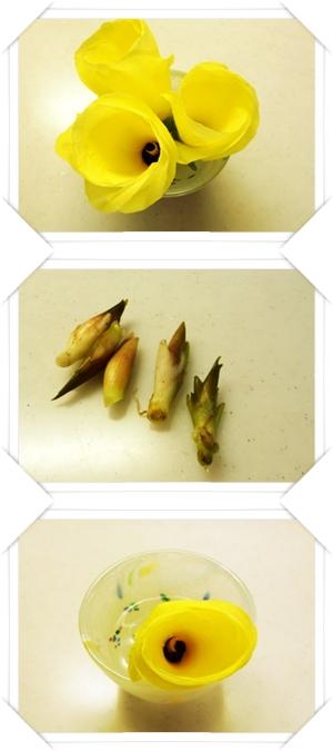 収穫9月6日