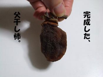 2011_11140031.jpg