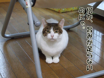 2011_12260024.jpg