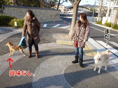 2012_02290022.jpg