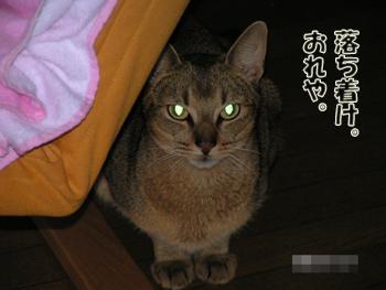 PICT0018_20111229224727.jpg