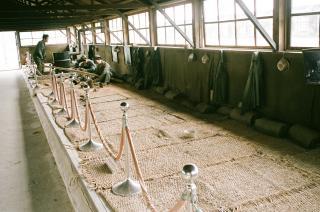 巨済島捕虜収容所