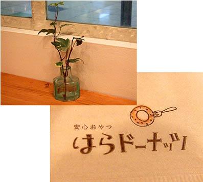 1_20110525163250.jpg
