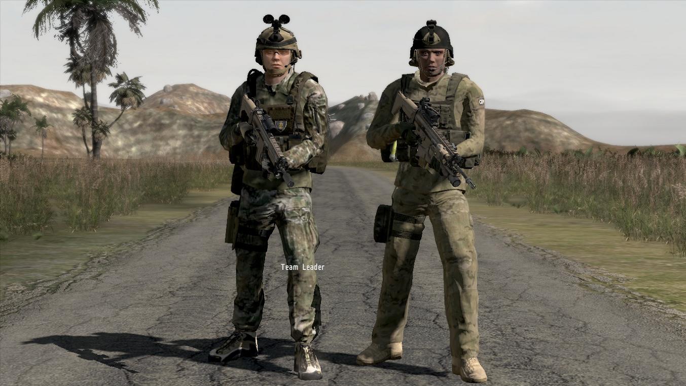 arma2OA 75thaddonco01