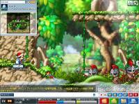 Maple0109.jpg