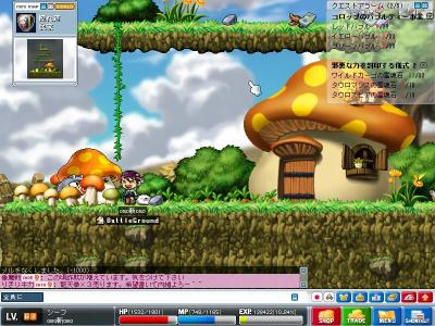 Maple0317.jpg