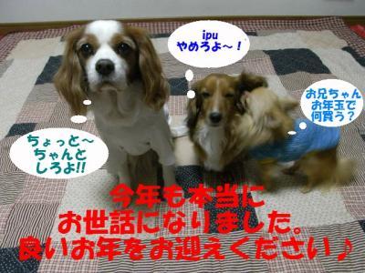 RIMG4664 - コピー