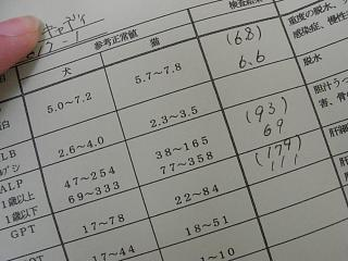 RIMG4697.jpg