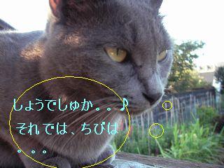20070918103446.jpg