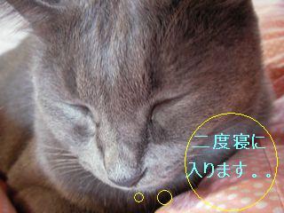 20070918103641.jpg