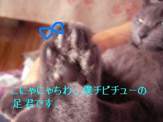 20070925194608.jpg