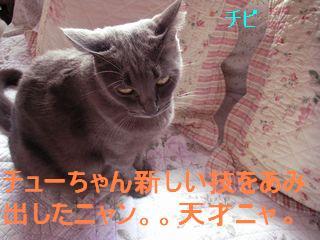 20070927123607.jpg
