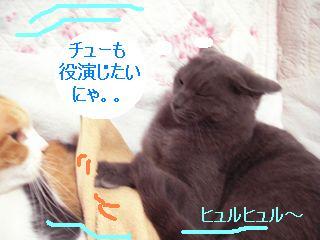 20071019194613.jpg