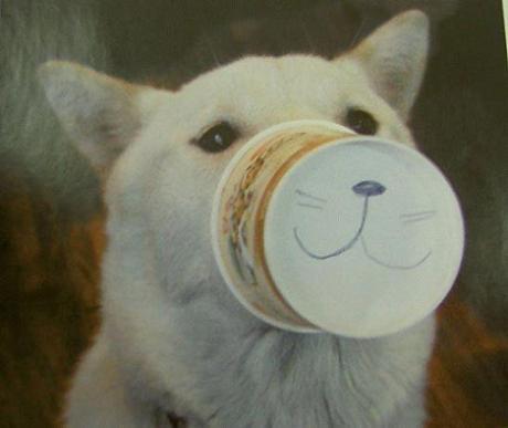 結局、犬は犬。