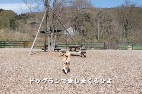 180_20110530012810.jpg
